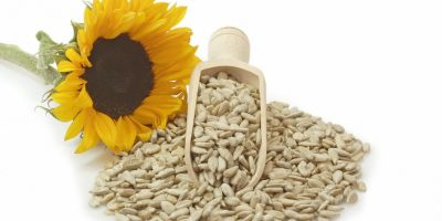 6-basse_blog_1_sunflower_seeds